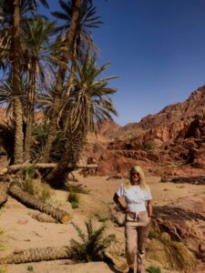 Read more about the article South Sinai Guide Part 2: St. Catherine and the Moses Mountain area.