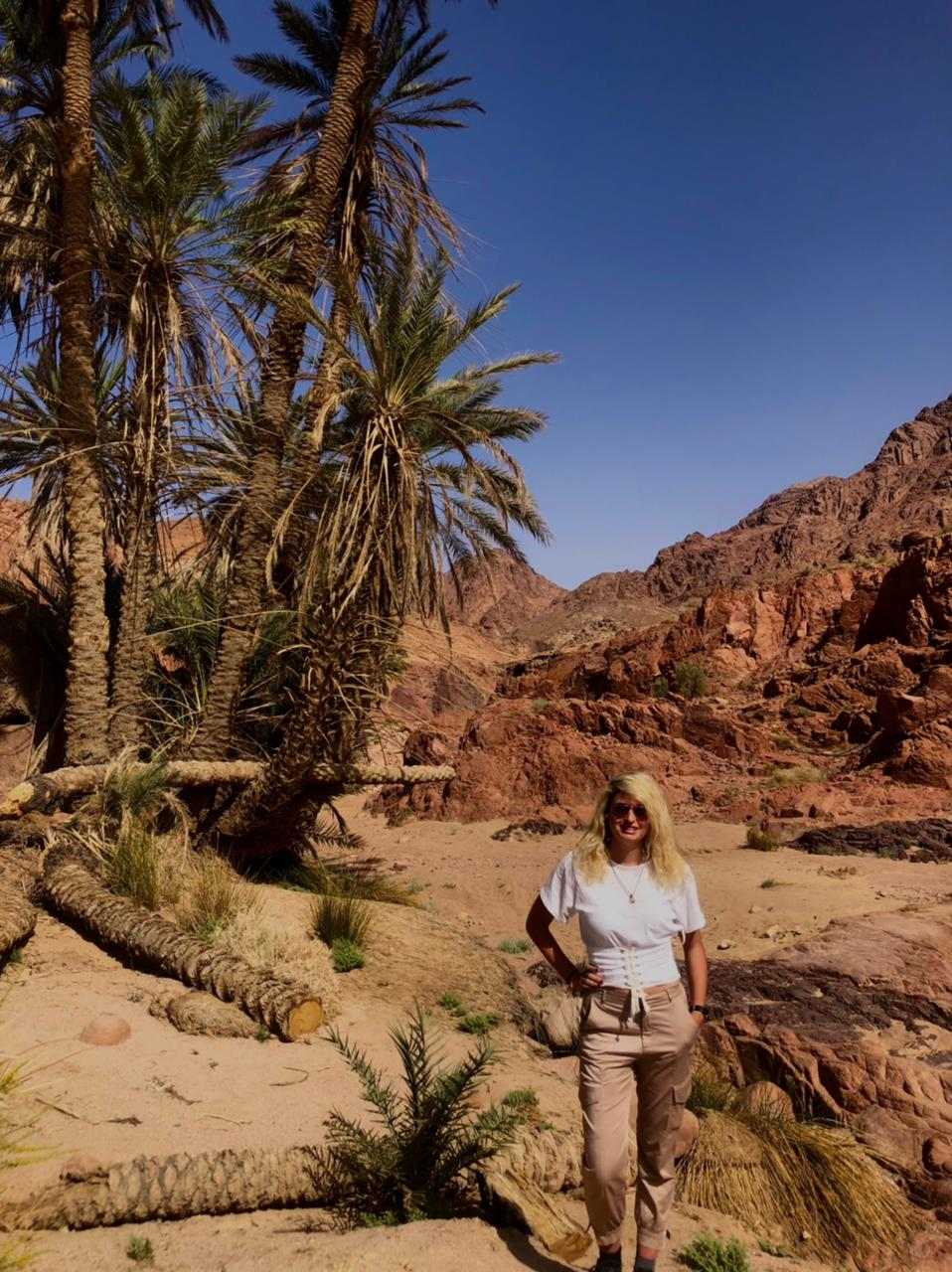 Read more about the article South Sinai Guide Part 2: St. Catherine and the Moses Mountain area. 🏔